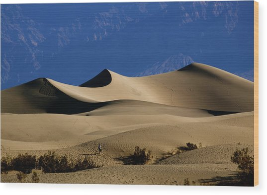 Mesquite Dunes At Death Valley Wood Print
