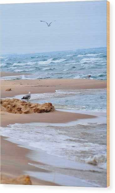 Michigan Seashore Wood Print by Tina Karle