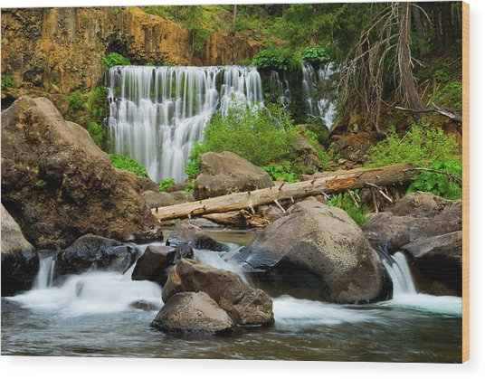 Middle Falls Of The Mccloud River Wood Print