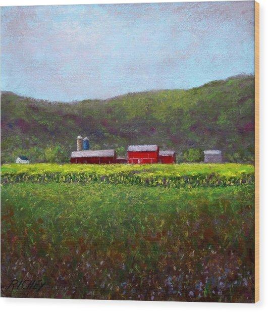 Midsummer In Pennsylvania Wood Print by Bob Richey