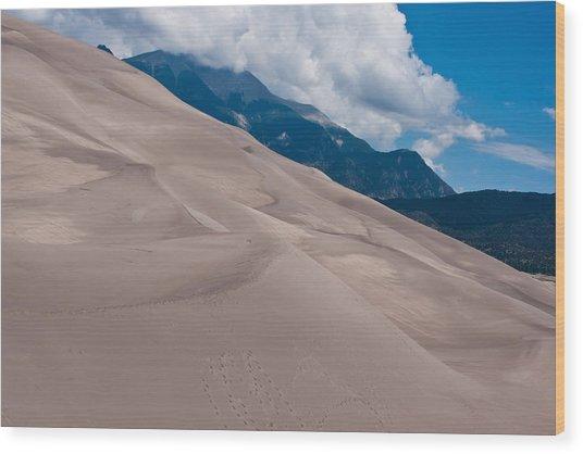 Miles Of Sand Wood Print