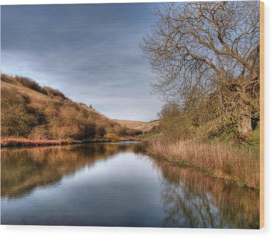 Millington Reflections Wood Print
