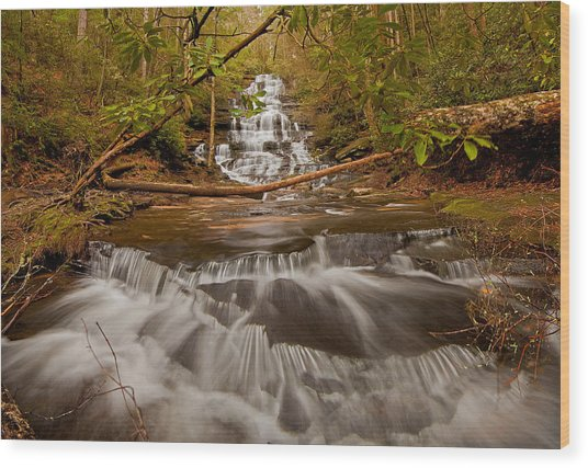 Minnehaha Falls Ga Wood Print