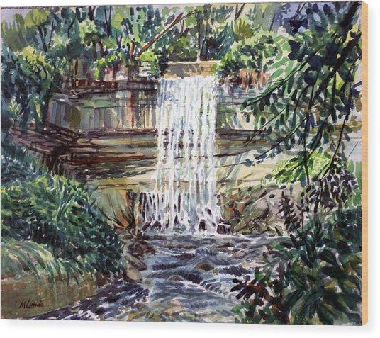 Minnihaha Falls Wood Print