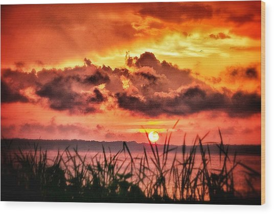 Mississippi Sunset At The Ross Barnett Reservoir 1 Wood Print