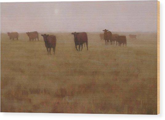 Missouri Morn Wood Print by Brian Freeman