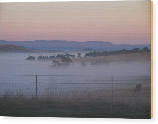 Misty Morning In The Country 1 Wood Print