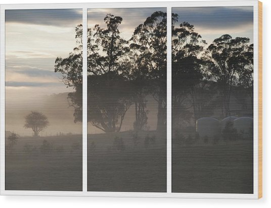 Misty Morning Triptych Wood Print