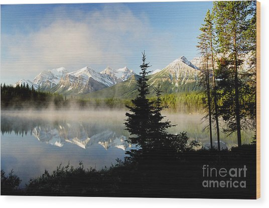 Misty Reflections Wood Print by Frank Townsley