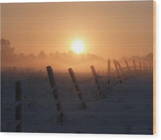 Misty Sunset Wood Print by Cat Shatwell