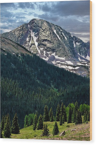 Molas Pass Wood Print