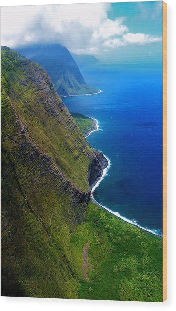 Molokai Coast Wood Print