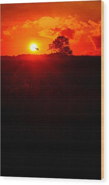 Monatch To The Sun Wood Print
