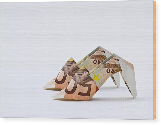 Money For Shoes Wood Print by Catherine MacBride