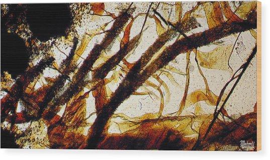 Monterrey Bay Wood Print