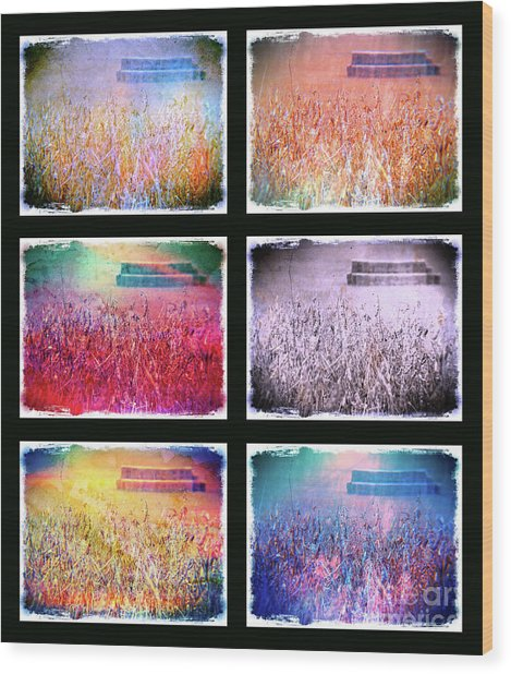 Moods Of The Harvest Wood Print by Kevyn Bashore