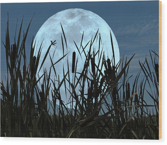 Moon And Marsh Wood Print