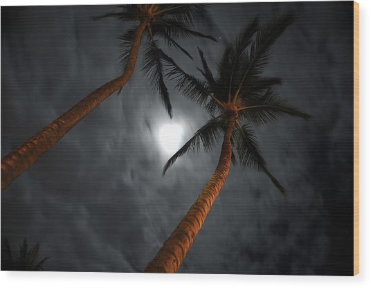 Moon And Palms Wood Print by George Crawford