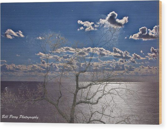 Moon Over The Water Wood Print by Bill Perry