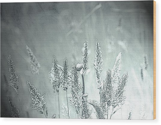 Moonlight Glow Wood Print by Terrie Taylor