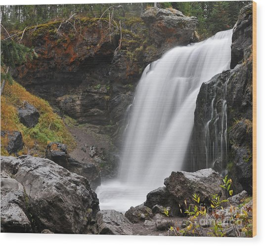 Moose Falls Yellowstone National Park Nature Waterfall Wood Print