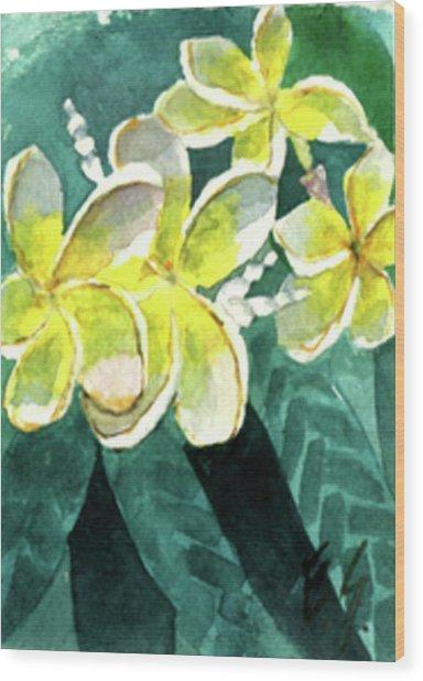 More Plumeria Wood Print