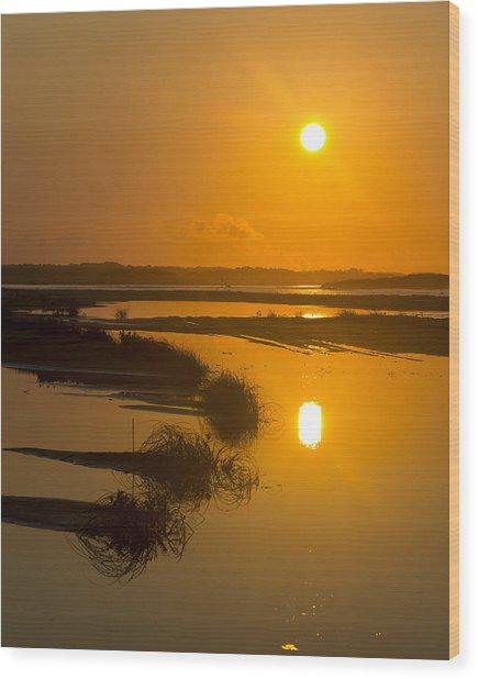 Morning Gold Wood Print by Alan Raasch