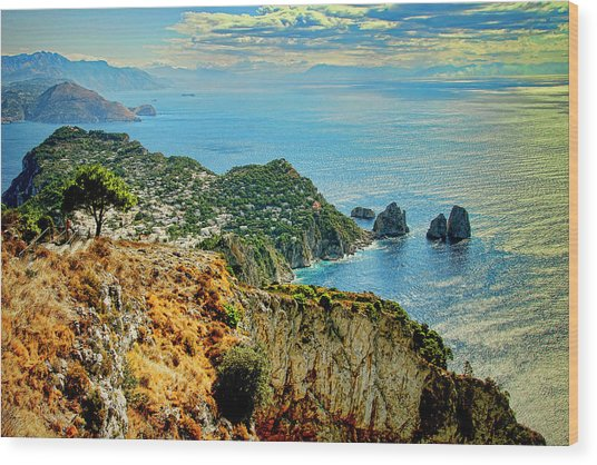 Morning In Capri Wood Print by Andre Salvador