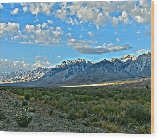 Morning In The Eastern Sierras Wood Print