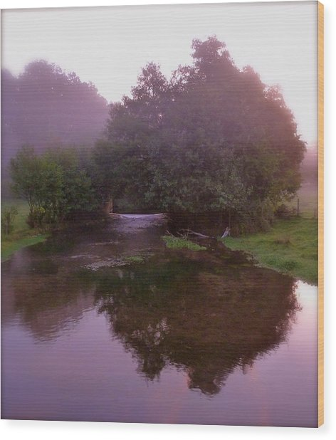 Morning Reflection Wood Print by Karen Grist