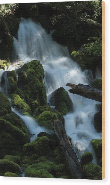Mossy Cascades Wood Print by Harry Snowden