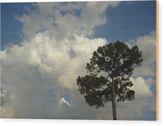 Mottled Clouds And Scrub Pine Wood Print by Debbie Wassmann