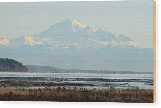 Mount Baker From Boundary Bay Wood Print by Pierre Leclerc Photography