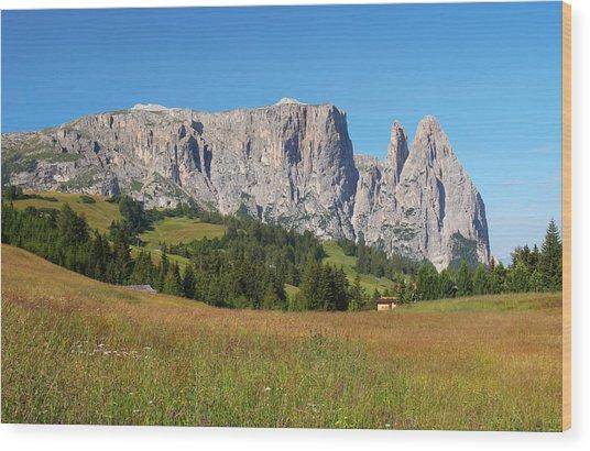 Mount Sciliar In Summer Wood Print by Dan Breckwoldt
