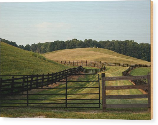 Mountain Farmland Wood Print