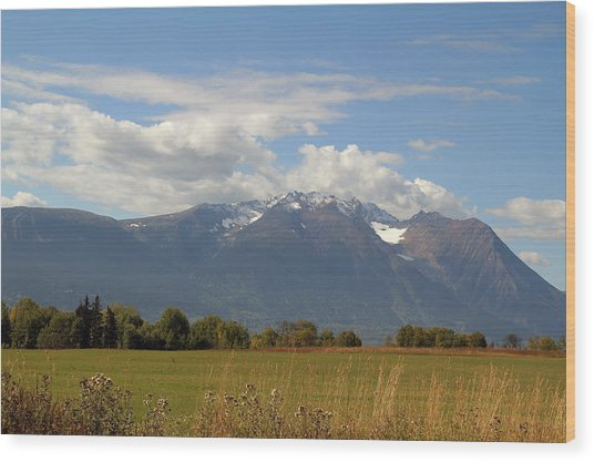 Mountain Field Wood Print by Kim French