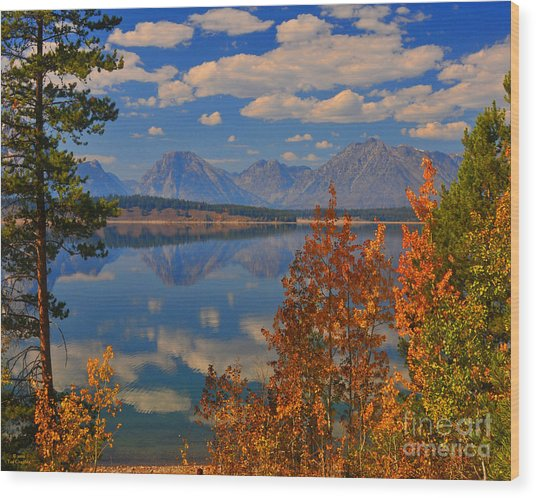 Mountain Reflections In Autumn Grand Tetons Wood Print