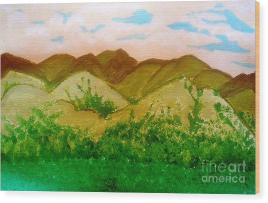 Mountain View Of Ecuador Wood Print