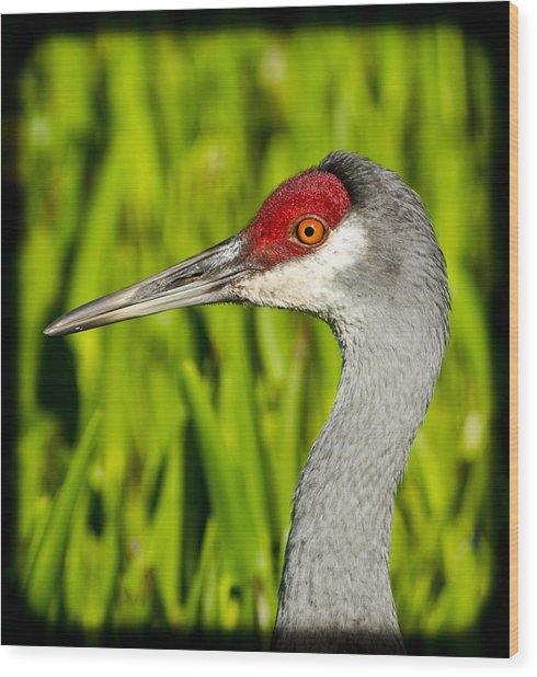 Mr Crane Wood Print