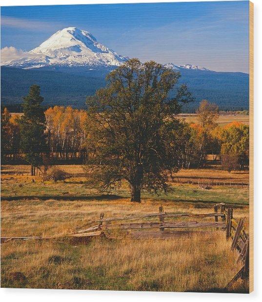 Mt. Adams Autumn Wood Print