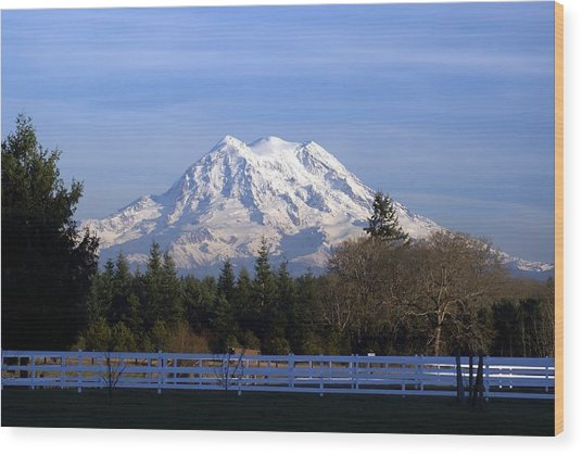 Mt. Rainier Fenced In Wood Print