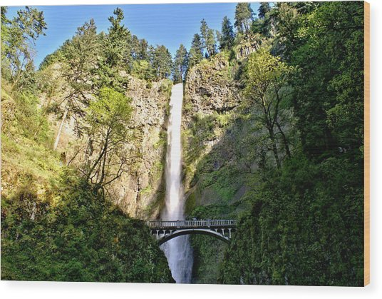 Multnohma Falls Oregon Wood Print