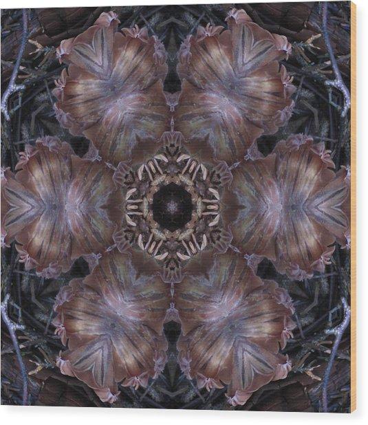Mushroom With Brown Center Wood Print