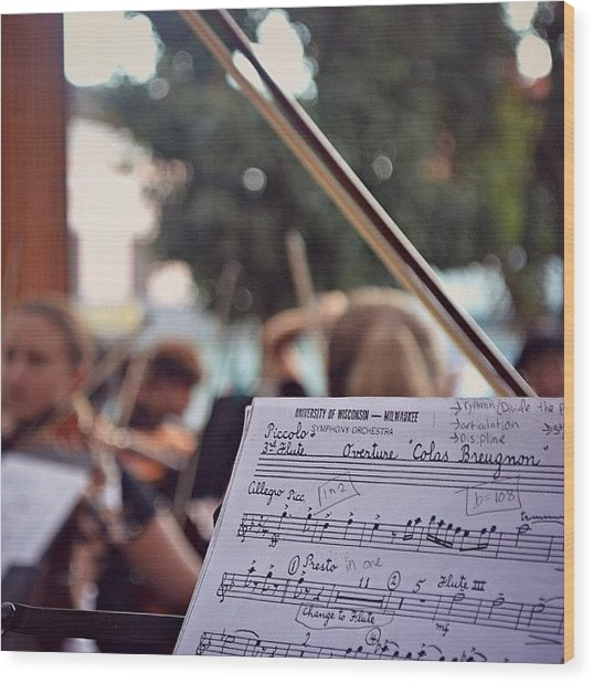 #music #bow #musicians #instruments Wood Print