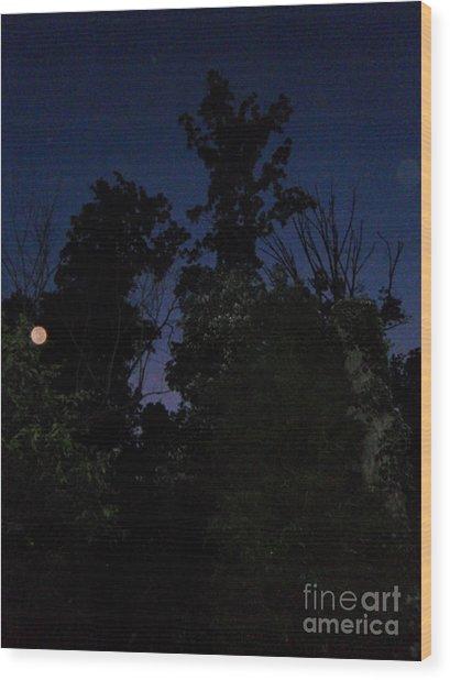 My Personal Backyard Moon Wood Print