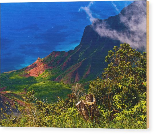 Na Pali Coast Hawaii 08 Wood Print