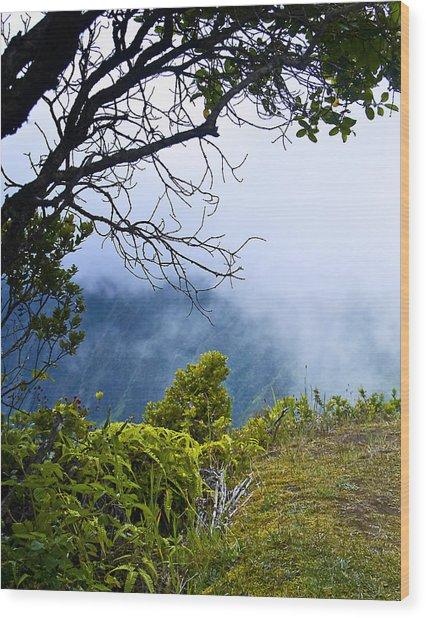 Na Pali Coast Hawaii 09 Wood Print