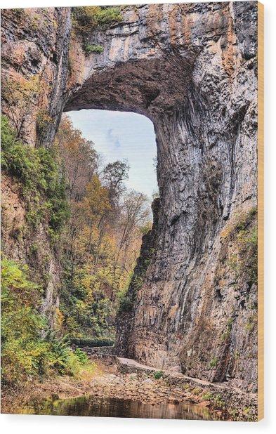 Natural Bridge Virginia Wood Print by JC Findley