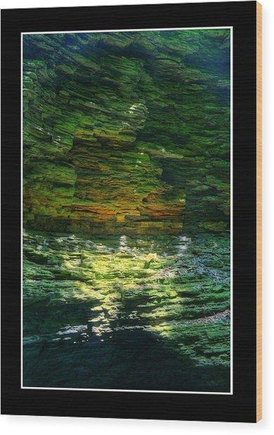Natural Light Wood Print by Matthew Green