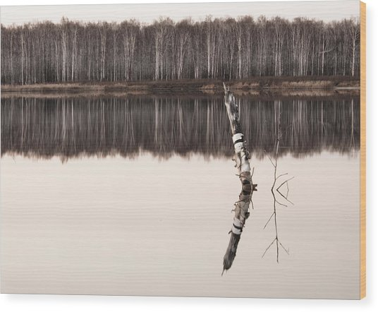 Nature Reflection Wood Print by Gouzel -